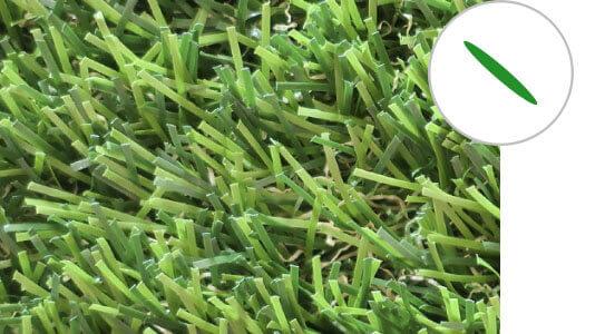 c grass 2