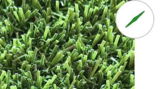 diamond grass