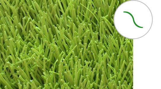 s grass 1